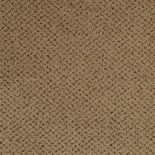 Montauk in Timber - Carpet by Masland Carpets