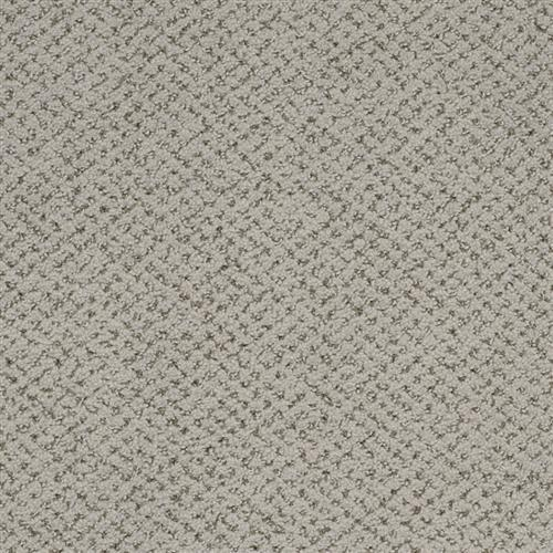 Montauk in Oyster Shell - Carpet by Masland Carpets