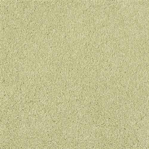 ProductVariant swatch small for Springhill flooring product