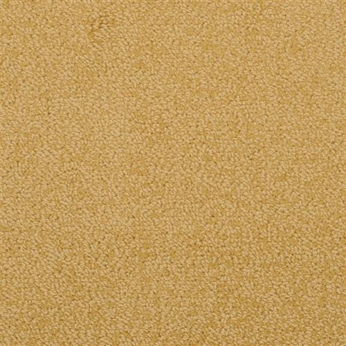 Novellino Golden 377