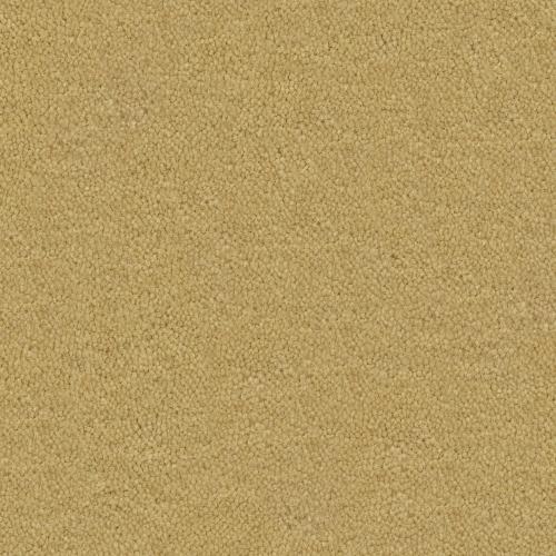Cache Desert Sand 355