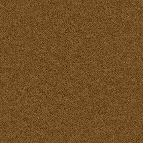 Cache Golden Brown 356