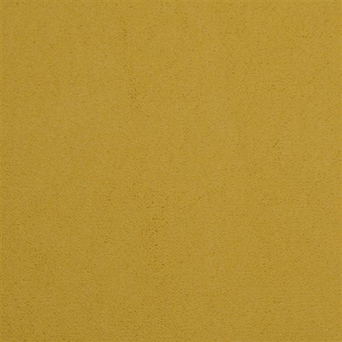 Cache Pale Yellow