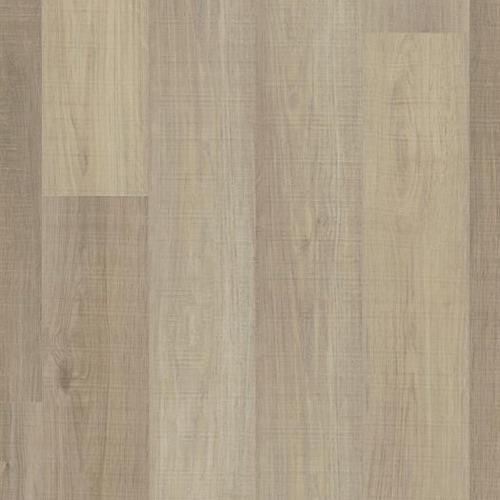 Coronado Oak