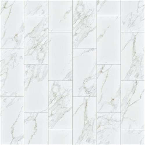 Shaw Industries UNIVERSE 12X24 White Ceramic & Porcelain