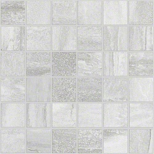 FOSSIL MOSAIC Trace 00163