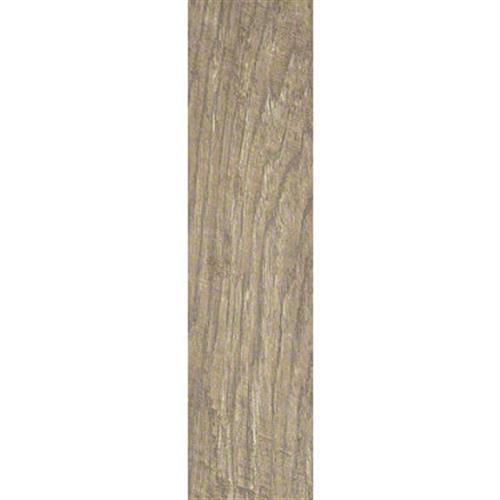 Petrified Hickory 6X24 Relic 00500