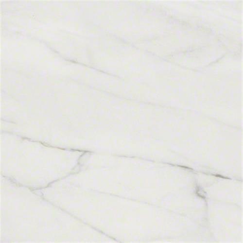Maximus 12x12 in Carrara - Tile by Shaw Flooring