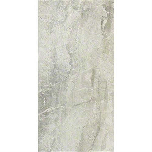 Apex 12X24 Grey 00500