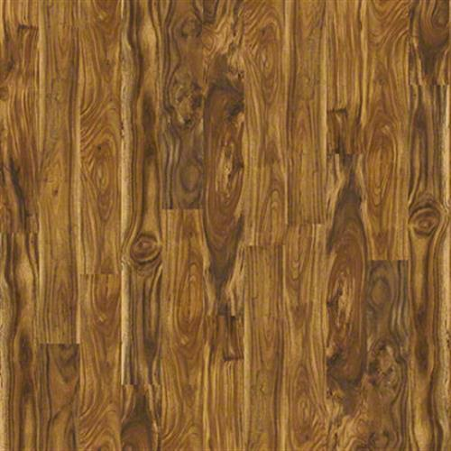 Eastborne Natural Acacia 00294