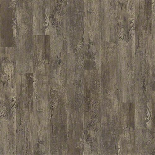 Premio Plank Cortona 00575