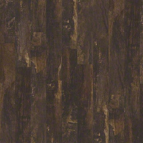 Premio Plank Monte 00754