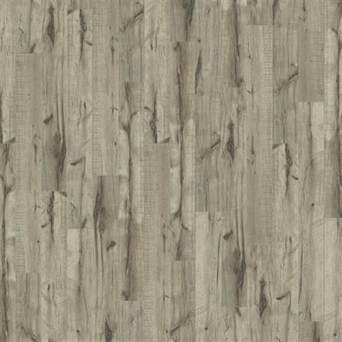 TREASURE COVE Golden Hickory 02005