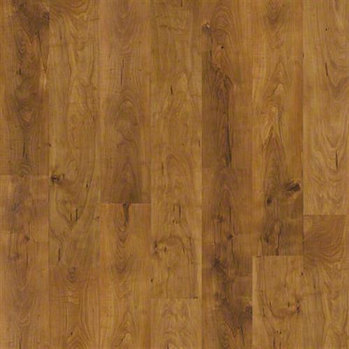 Slp58 in Summerville Pn - Laminate by Shaw Flooring