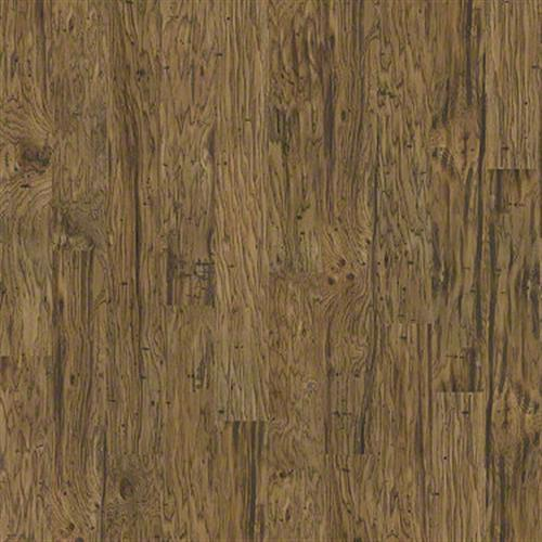 Alpine in Reservoir Hckry - Laminate by Shaw Flooring