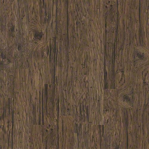 Alpine in Rouge Rvr Hckry - Laminate by Shaw Flooring