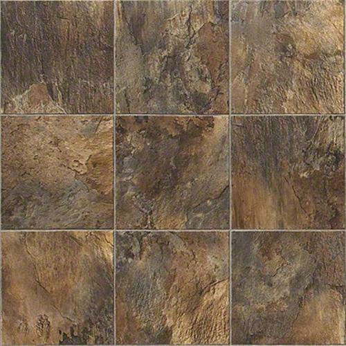 Shaw Industries Salem Sari Vinyl Sheet Goods Carpet Land Inc - Vinylboden für industrie