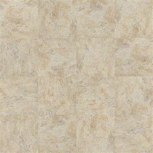 Georgetown Tile Oyster 00200