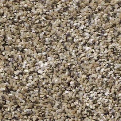 Carpet Because We Can I 12' & 15' Sea Shell  main image