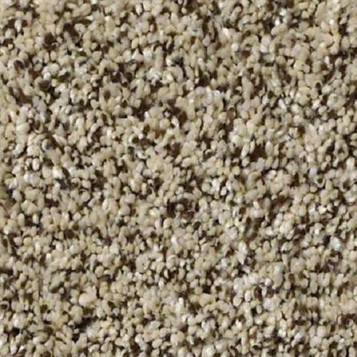 Carpet Because We Can I 12' & 15' Ivory Coast  main image