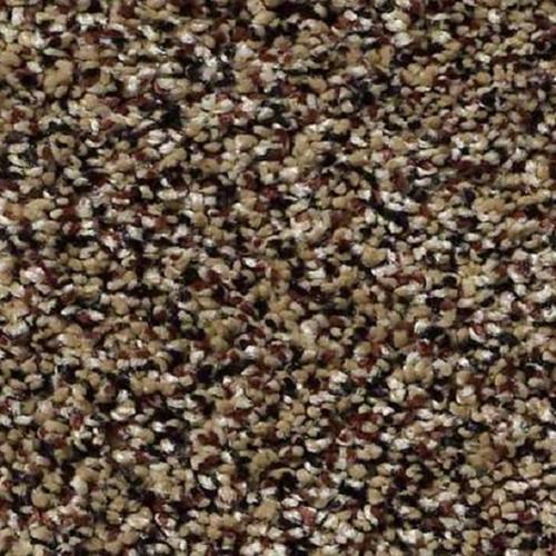 Carpet Because We Can I 12' & 15' Raw Sienna  main image