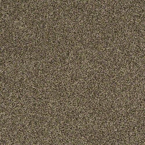 Polished Texture II Historic Texture 00771