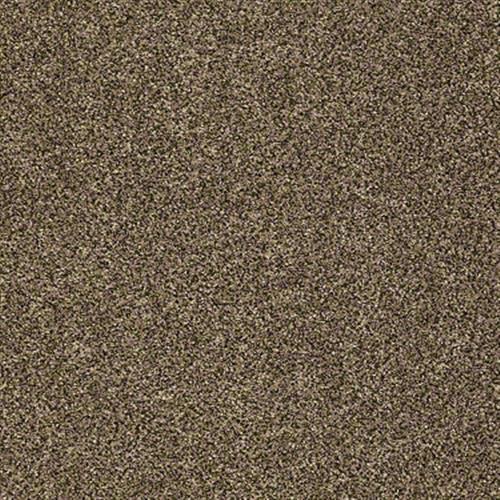 Polished Texture II Derby Texture 00772