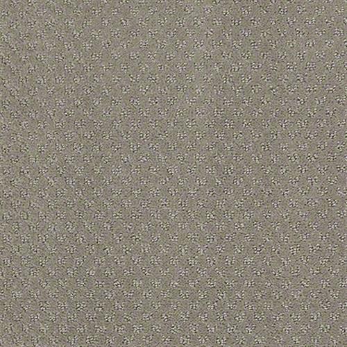 Mar Vista Koala 00553