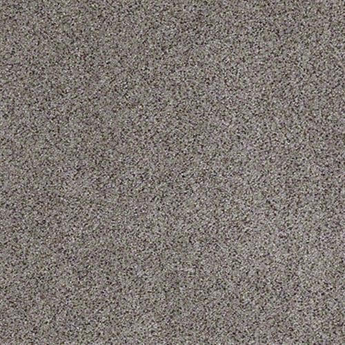 All There in Stony Ground - Carpet by Shaw Flooring