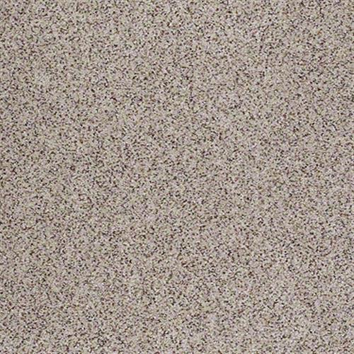 All There in Aurora - Carpet by Shaw Flooring