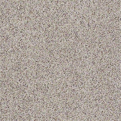 All There in Dogwood - Carpet by Shaw Flooring