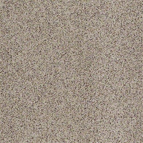 All There in Terrazzo - Carpet by Shaw Flooring