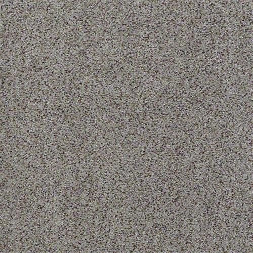 All There in Serene - Carpet by Shaw Flooring