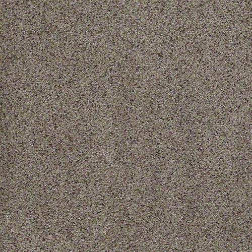 All There in Buckshot - Carpet by Shaw Flooring