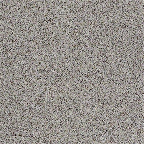 All There in Frost Bite - Carpet by Shaw Flooring