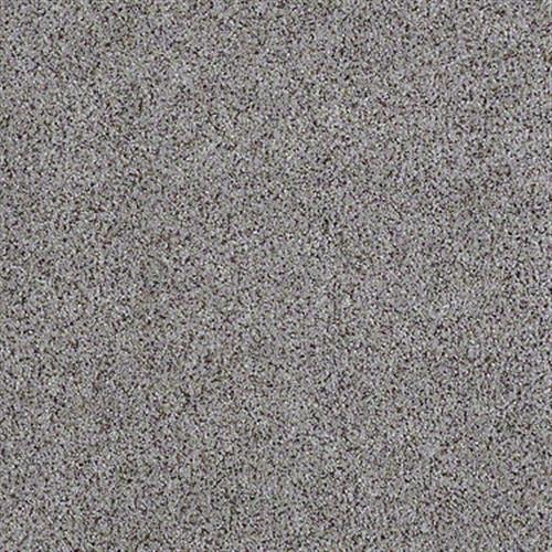 All There in Fossil - Carpet by Shaw Flooring
