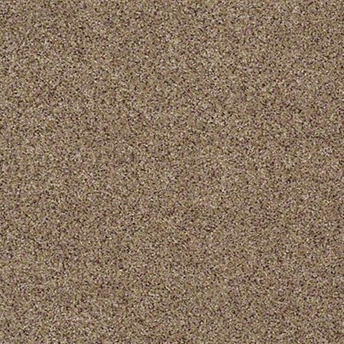 All There in Cinnamon Toast - Carpet by Shaw Flooring
