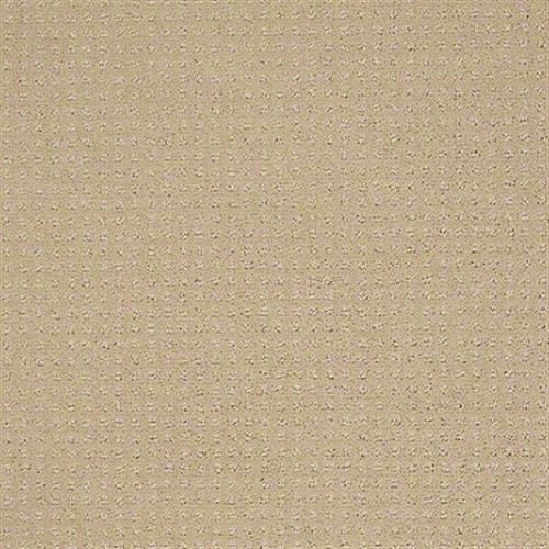 Enduring Comfort Pattern Mesa 00105