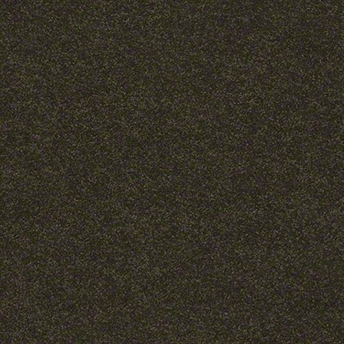 SECOND GLANCE Fir 00339