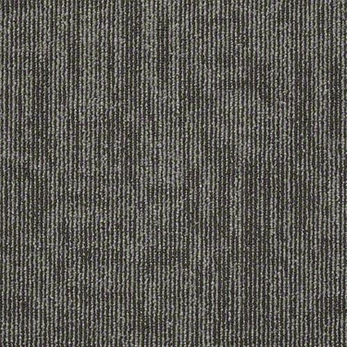 Carbon Copy Clone 06710