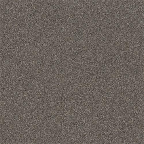 CALM SIMPLICITY I Antelope 00714