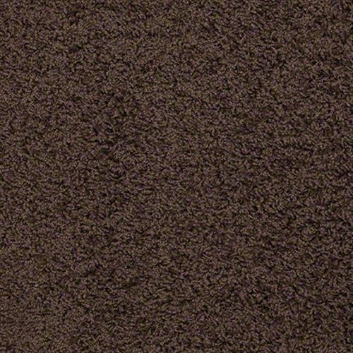 Amplified Dark Fudge 00701