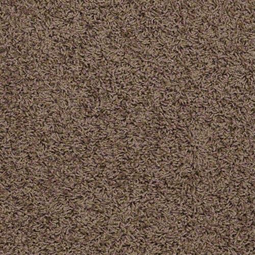 Amplified Brown Sugar 00702