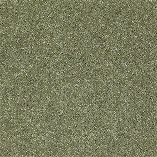 Shasta II Going Green 00330