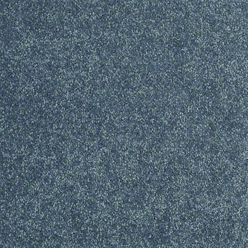 Shasta II Ocean 00430