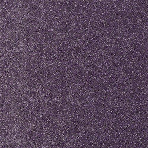 San Rafael Violet Crush 00930