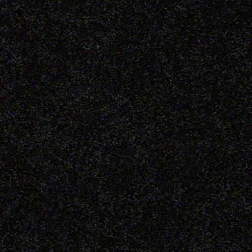 San Rafael Coal Black 55502