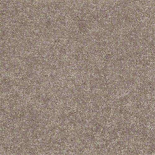 Shasta II Taupe Mist 55792