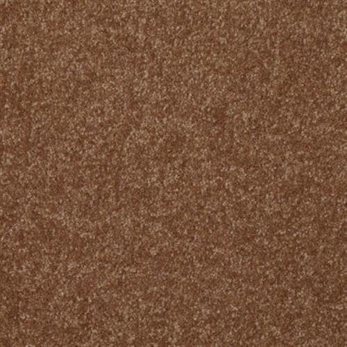 PASSAGEWAY 2 12 Soft Copper 00600