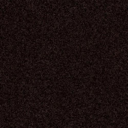 PASSAGEWAY 2 12 Dark Roast 00709